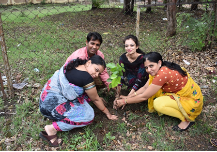 Photo of Tree Plantation 02